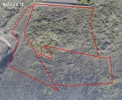 Ampio Terreno Agricolo 9 ettari