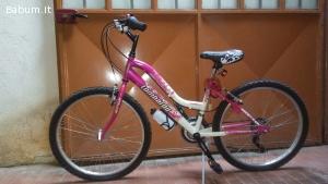 bicicletta citybike