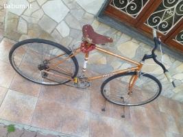 Bicicletta da uomo Frejus