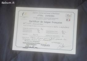 Lezioni di francese/inglese