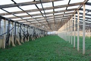 Terreno con fabbricato rurale vicin