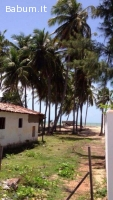 Terreno edificabile in Brasile